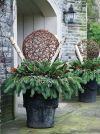 Add ornaments, ribbons, and branches to planters for a personalized touch.