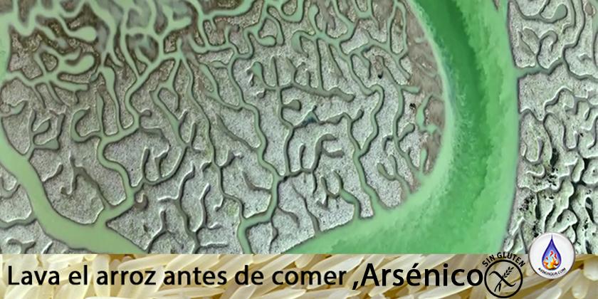 lavar-arroz-como-quitar-arsenico-almidon aydoagua