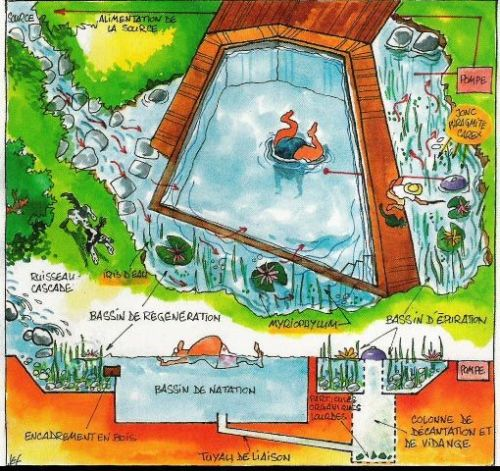 Biopiscinas Bioestanques piscinas naturales aydoagua