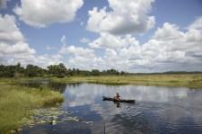Guyana river