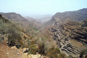 Day Forest National Park, Djibouti