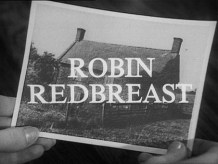 Robin Redbreast BFI dvd-A Year In The Country-Play For Today