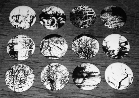 Artifact 23-Badges-A Year In The Country