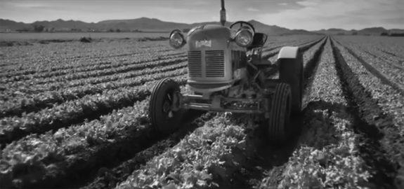 Farm image-3