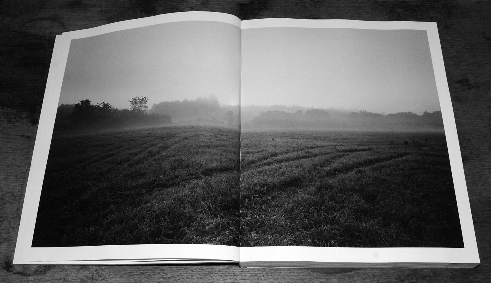 Barbara Bosworth & Margot Anne Kelley's The Meadow