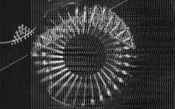 Jeffrey Siedler-Logic Formations-Buried Treasure-DVD-screenshot-3