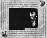 David Sylvian-Secrets of the Beehave-back cover