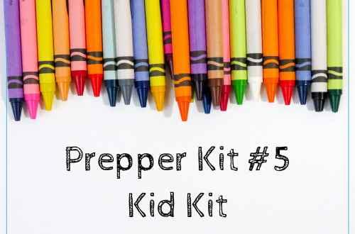 Prepper Kit #5 Kid Kit