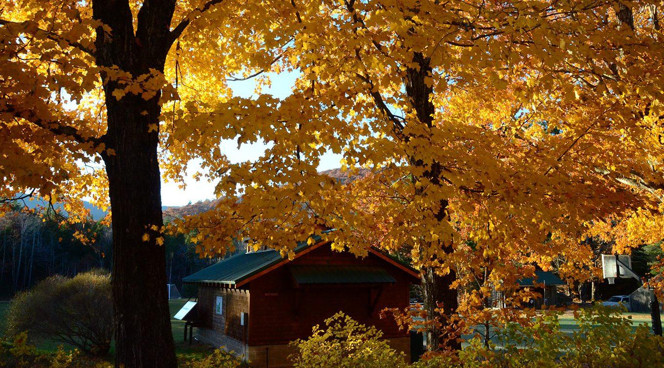 Basketball court through Merrowvista fall foliage