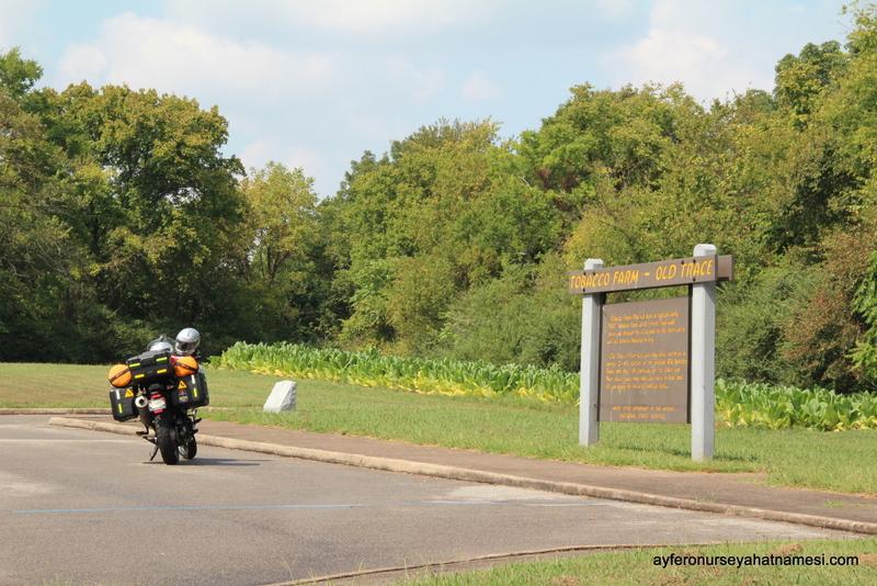 Natchez Trace Parkway-19