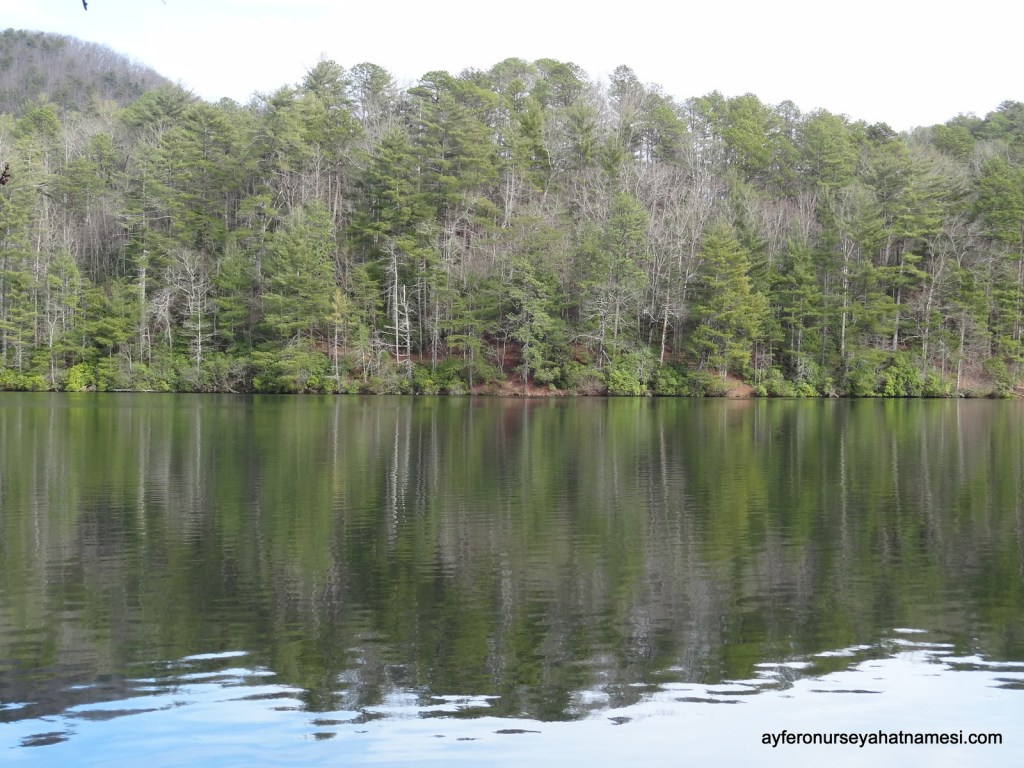 Smith Lake - Unicoi State Park