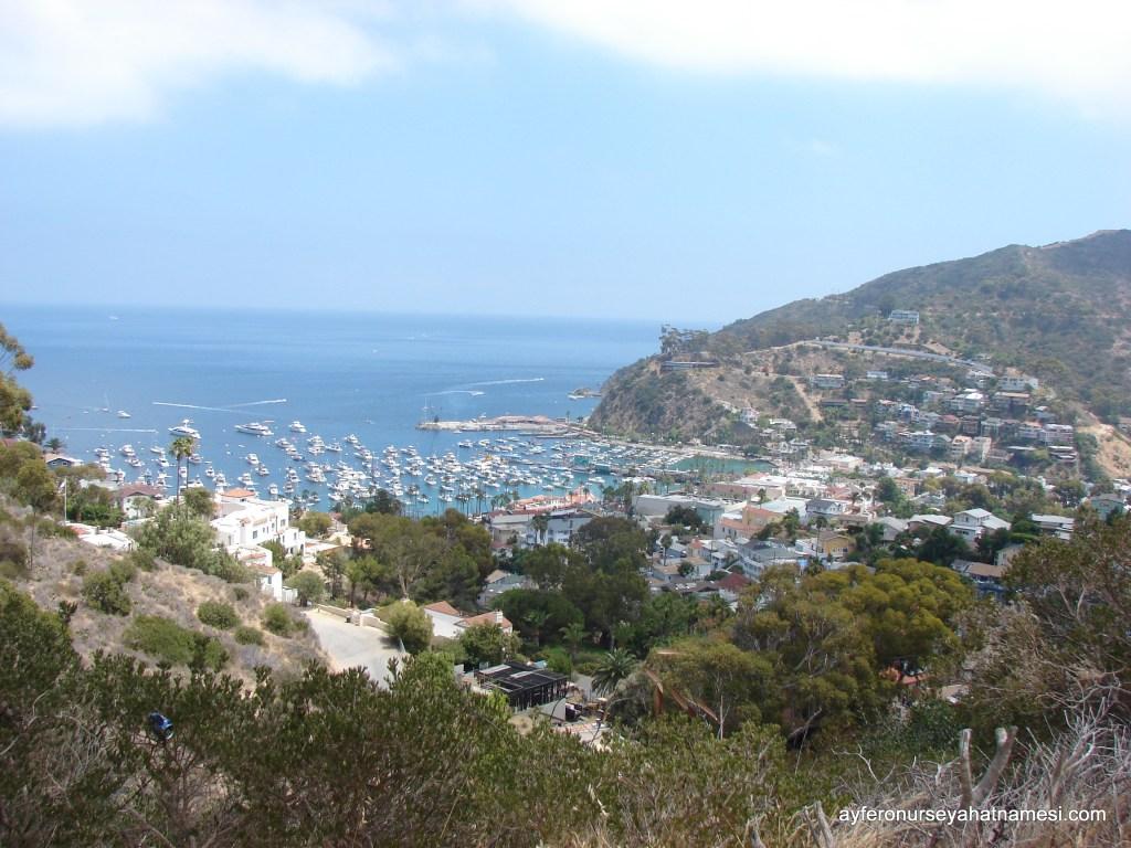Catalina Adası