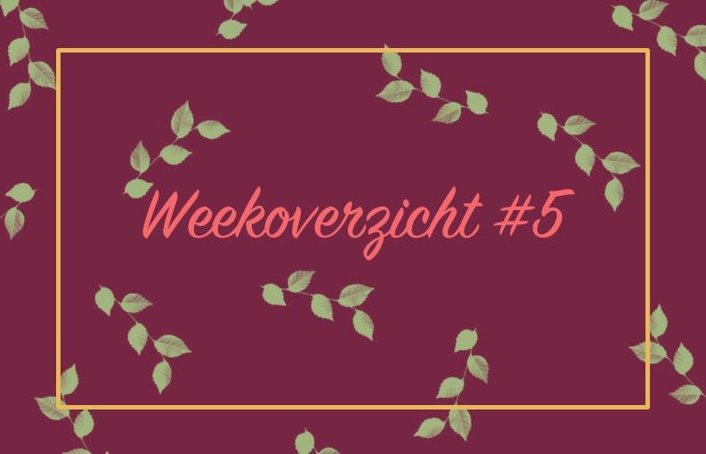 Header weekoverzicht #5 Aylovelife