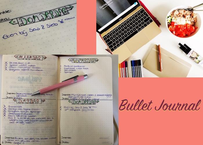 Bullet journal overzicht dagboek