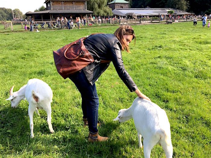 Ayla aait geiten op de geitenboerderij