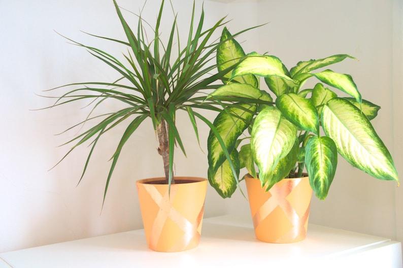 Plantenbak