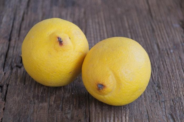 Samen afvallen; twee citroenen