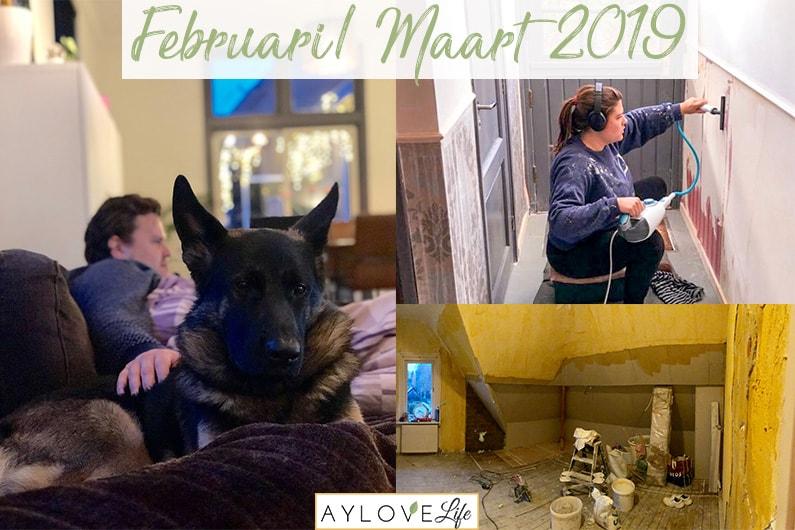 Maandoverzicht feb/maart 2019