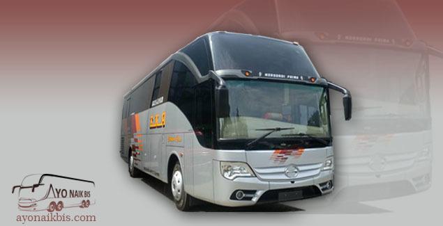 New bus EKA GT 2