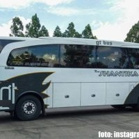 Bus PO New Shantika