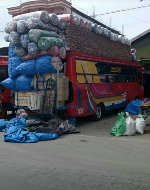 Image result for bus sulawesi membawa barang