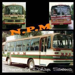 PT NPM