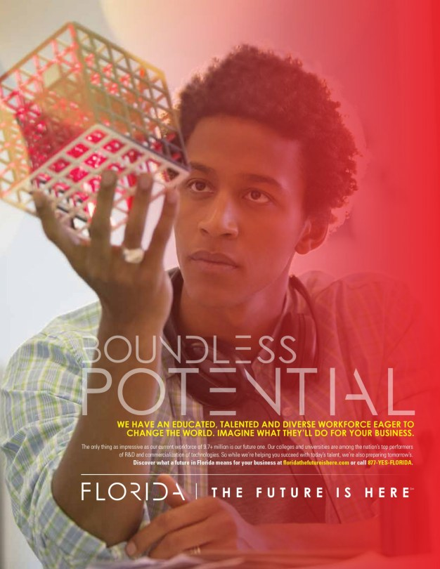 Florida-Boundless-Potential-Ad-one-page