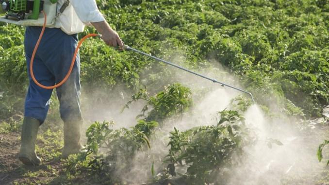 رش المبيدات في صور: الناس قلقون - ayteet.net