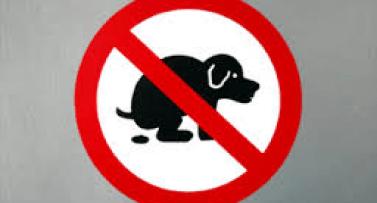 prohibicion-perros.png - 44.98 KB