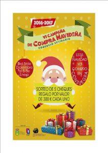 VI-camp-compras-navidad2016-17