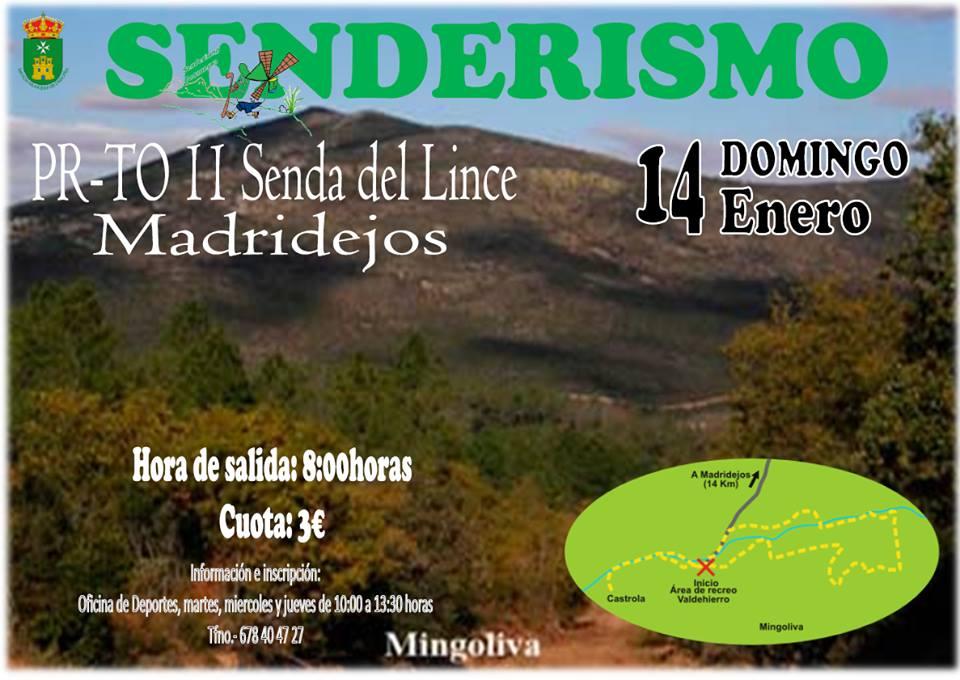 Portal municipal del ayuntamiento de consuegra for Piscina cubierta madridejos
