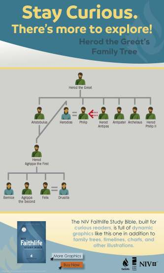 niv-faithlife-infographic-herods-family-tree