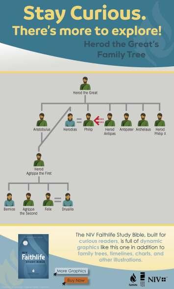 niv-faithlife-infographic-herods-family-tree
