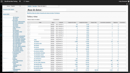 adminer en wordpress