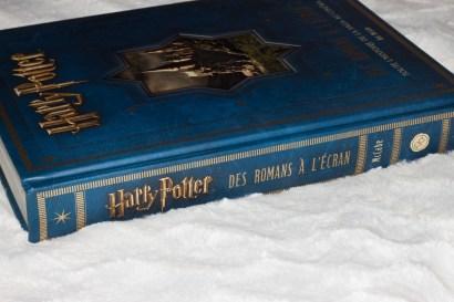 harry potter RaE (10)