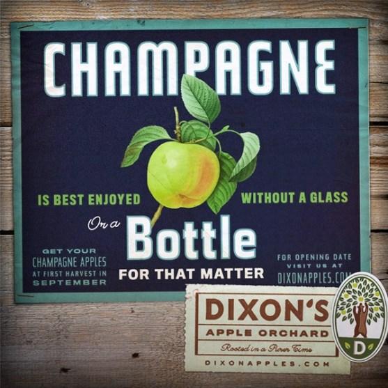 Contoh Corporate Identity Dixon Orchard 6