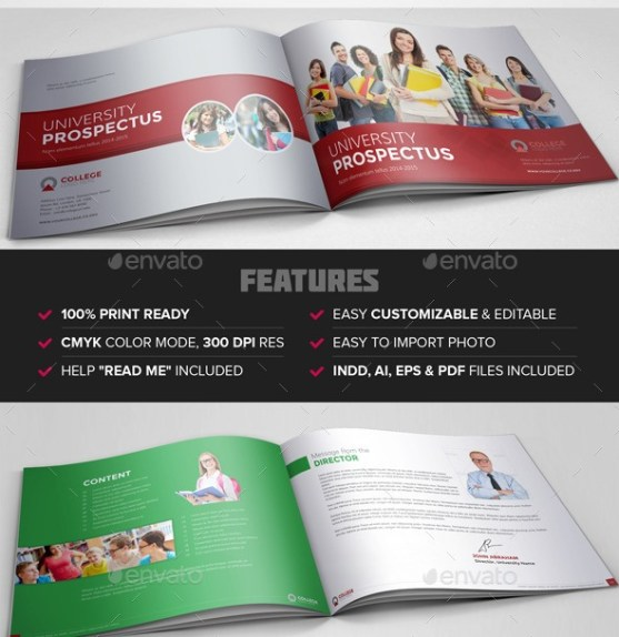 25 Contoh Brosur Sekolah Pendidikan Free Download Templates