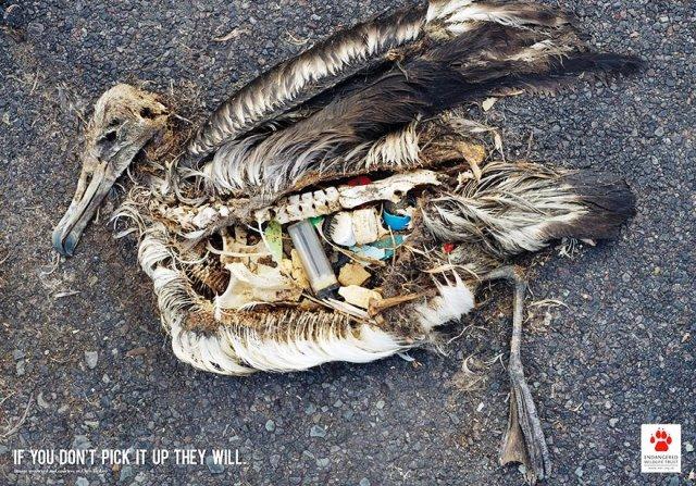 Iklan Layanan Masyarakat Paling Mengena - Iklan-konservasi-lingkungan
