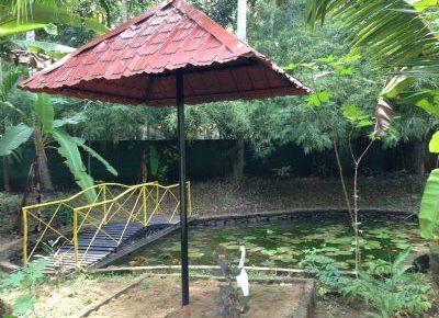 Mitra Hermitage Ayurveda