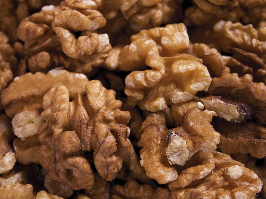 Walnut Image source -- https://www.flickr.com/photos/idadesign/649424063/sizes/o/