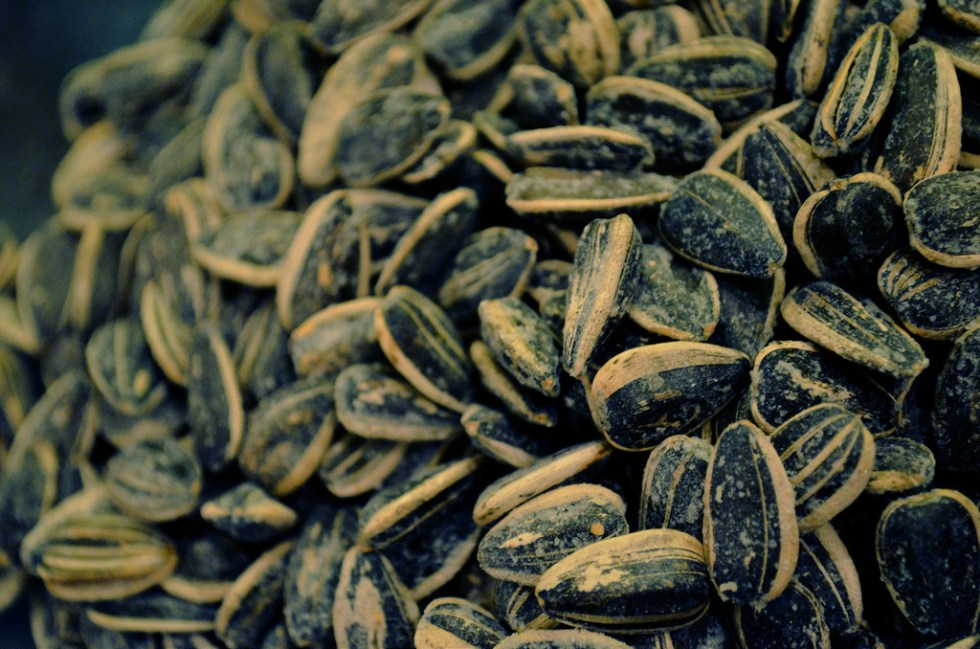 Sunflower seeds image source -- https://www.flickr.com/photos/84265036@N05/7716918466/sizes/l