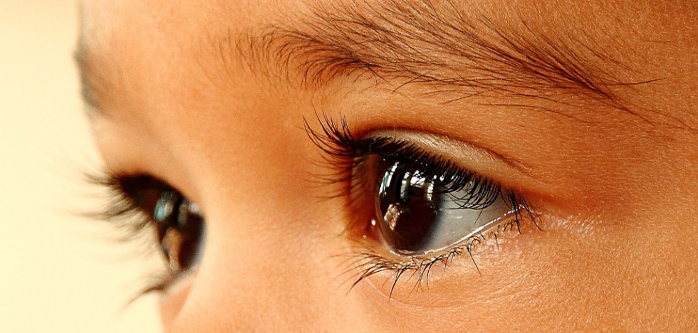 Eyes Image source -- https://www.flickr.com/photos/78167207@N05/8004546559/sizes/l
