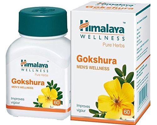 Gokshura — Benefits and Uses