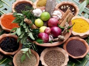 ayurveda concept of nutrtion