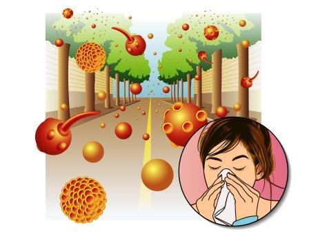 allergy to pollen, allergic rhinitis