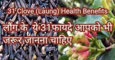31 Laung health benefits