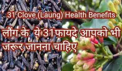 31 Laung health benefits