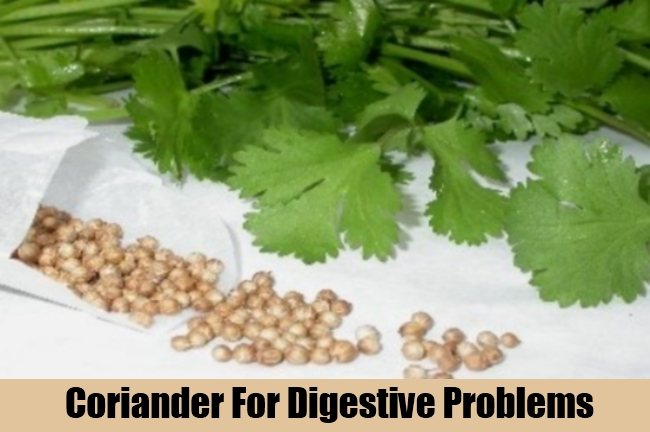 Coriander For Digestive Problems