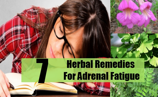 Herbal Remedies For Adrenal Fatigue
