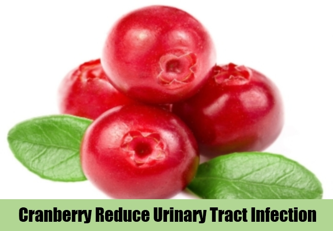 Cranberry Reduce Urinary Tract Infection
